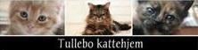 Tullebo Kattehjem - logo